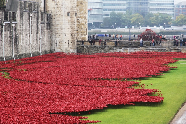 888246-ceramic-poppies-tower-of-london-remembrance-day-designboom-07