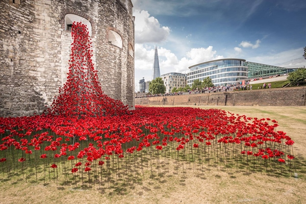 888246-ceramic-poppies-tower-of-london-remembrance-day-designboom-13