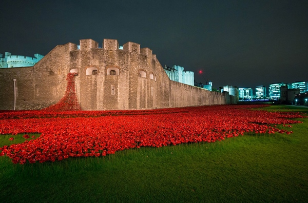 888246-ceramic-poppies-tower-of-london-remembrance-day-designboom-14