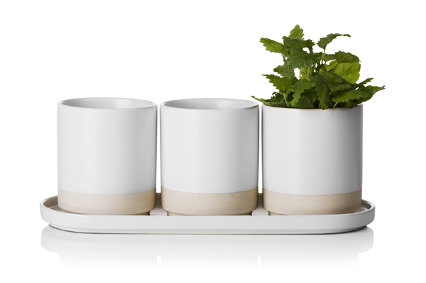 Spice herb pot 3-set with plate 31x12x11cm