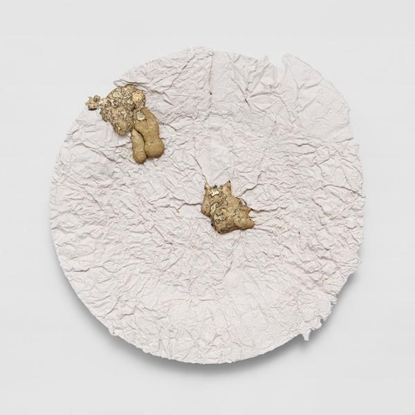 Wrinkled Plate Daniel van Dijck