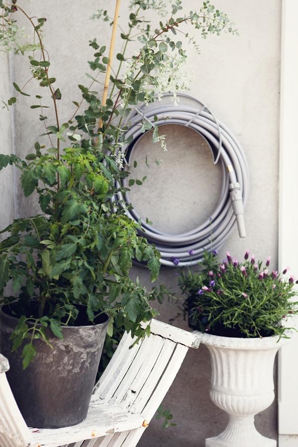 Garden glory EKPR 2