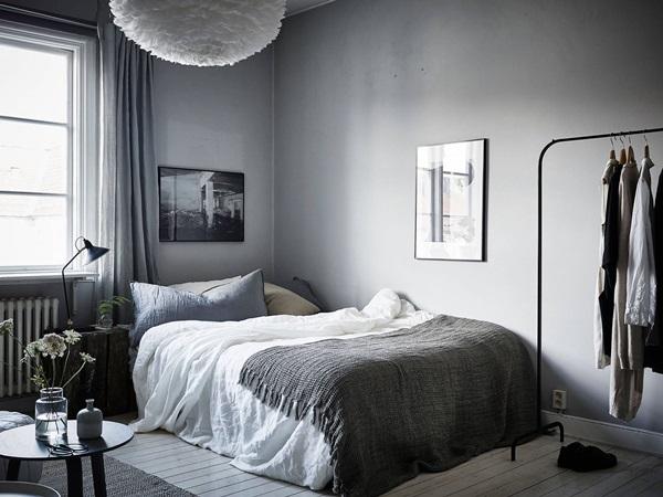 Dorm Room Ideas Minimalist Plants