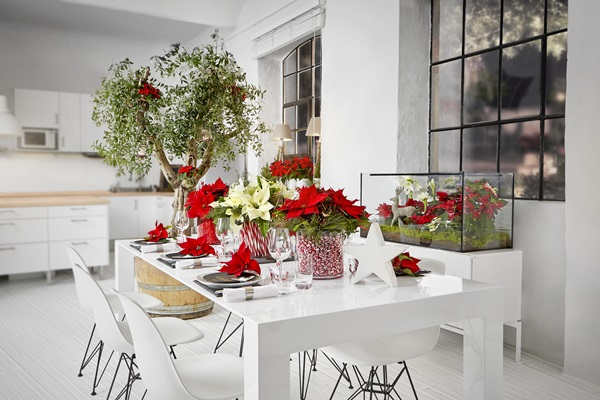 2015-poinsettia-modern-dining-room-se (1)