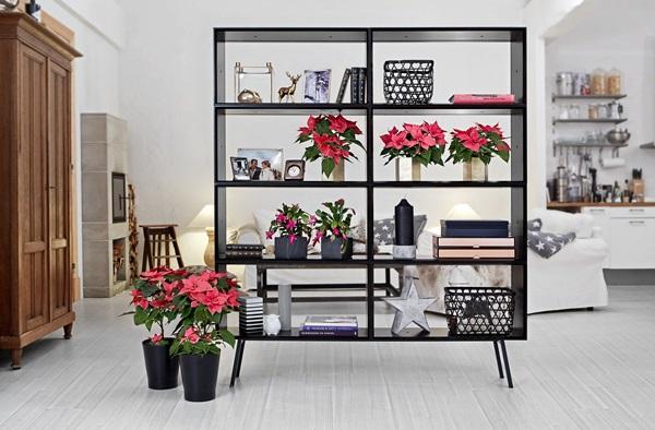 2015-poinsettia-modern-room-divider-se