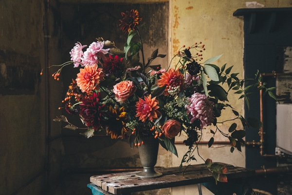 Wild_Flowers_Sheffield_DS