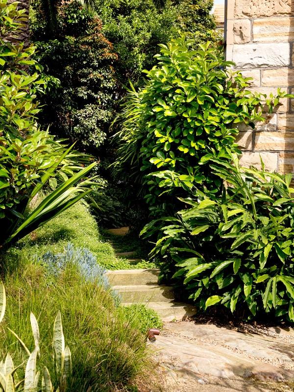 Gothic_Garden_Slide9-600x800