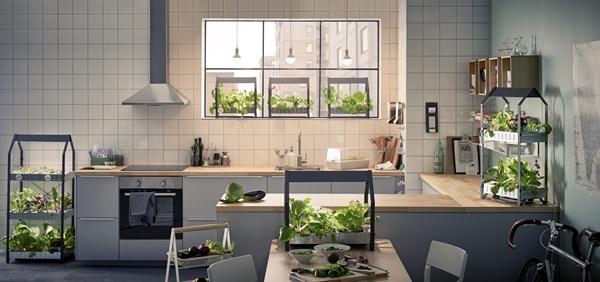 IKEA_KRYDDA_odlingsenhet_44x25cm1