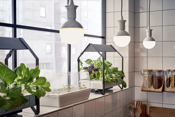 IKEA_VAXER_plant_och_groddlada_42x23cm_KRYDDA_odlingsenhet