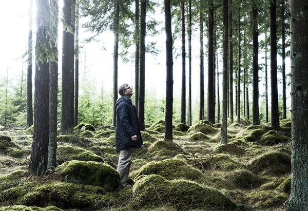 IKEA_Jan_Ahlsen_skog