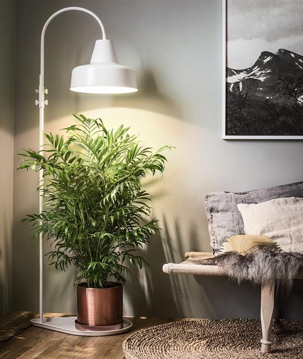 plantagen-indoor2016-myssoffa-10