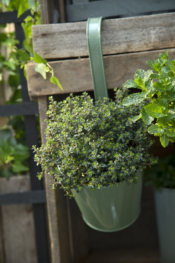 Avaliable30March_BalconyPlanter_SostreneGrene_OutdoorLiving_2