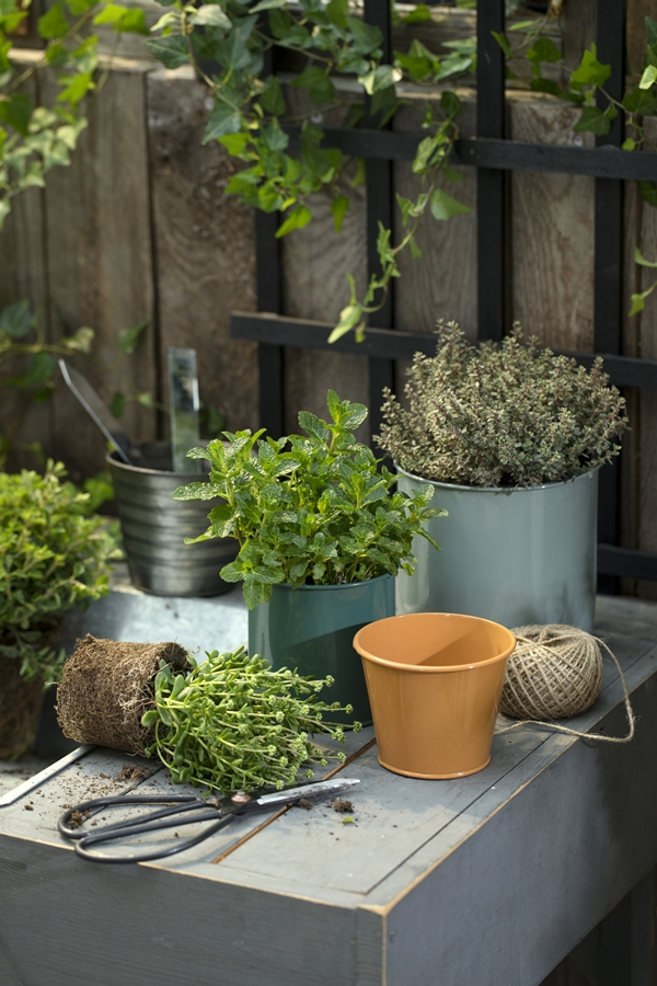 Avaliable30March_Flowerpots_SostreneGrene_OutdoorLiving_1