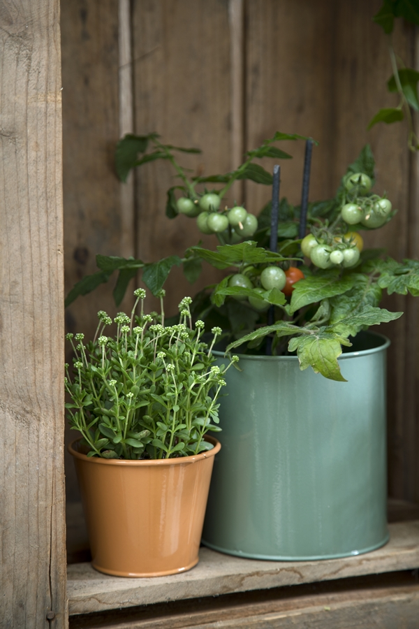 Avaliable30March_Flowerpots_SostreneGrene_OutdoorLiving_2