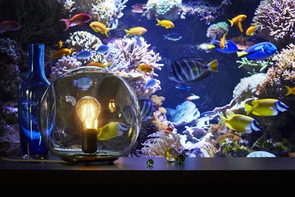 IKEA_FADO_bordslampa_med_LUNNOM_ljuskalla.PH144654