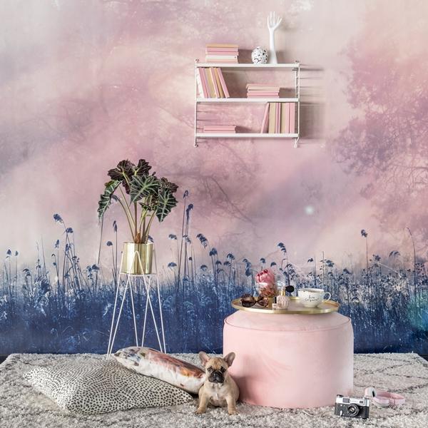 pink_day_dreamer-1