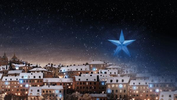 bris julstjarna