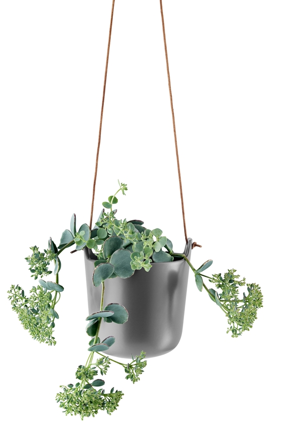 568161_Selfwatering_pot_Nordic_grey_lige_paIS_med_plante_HIGH