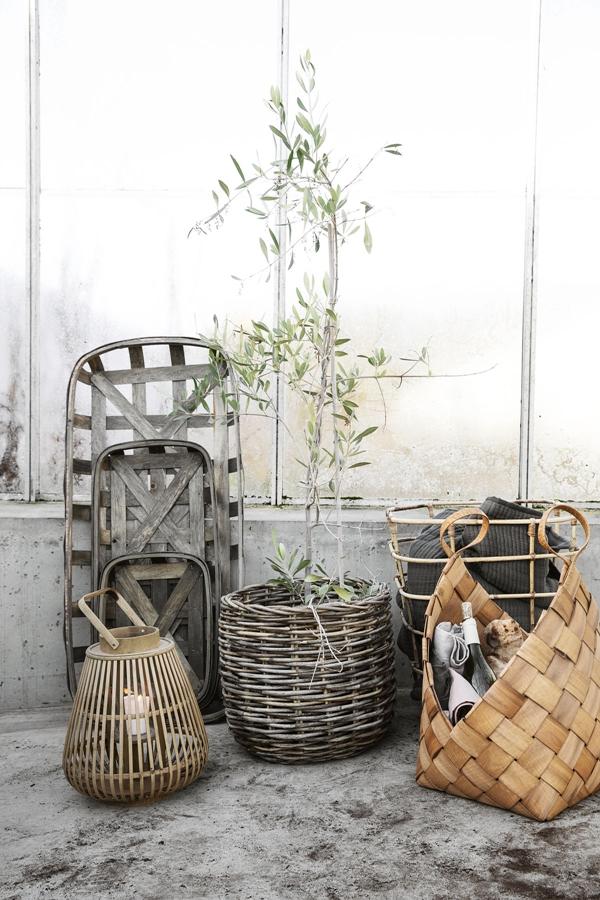 hd_ss18_greenhouse26_ch