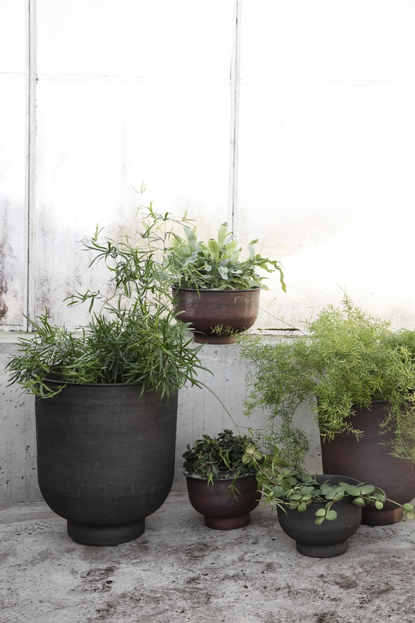 hd_ss18_greenhouse29_ch