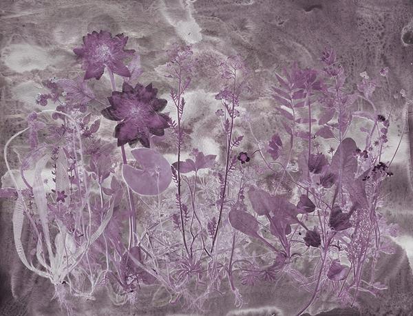 FloraHysterica5