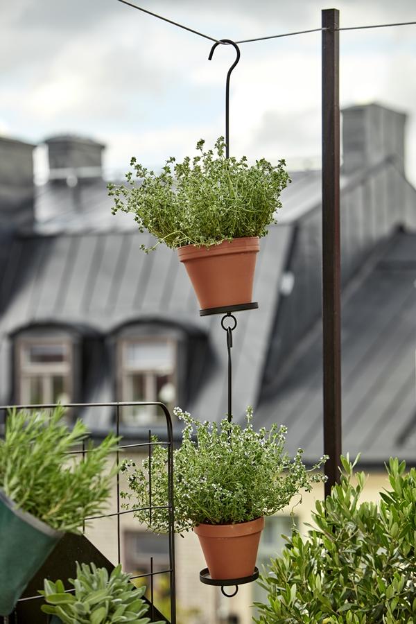 GYO_pothanger_herbs