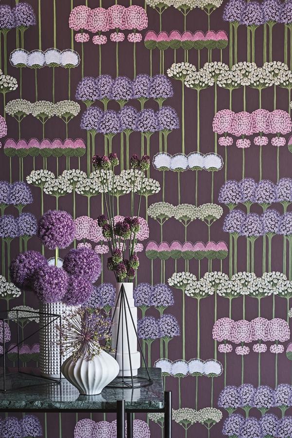 C&S_Botanical _Botanica__Allium _Allium_ 115-12036_Crop