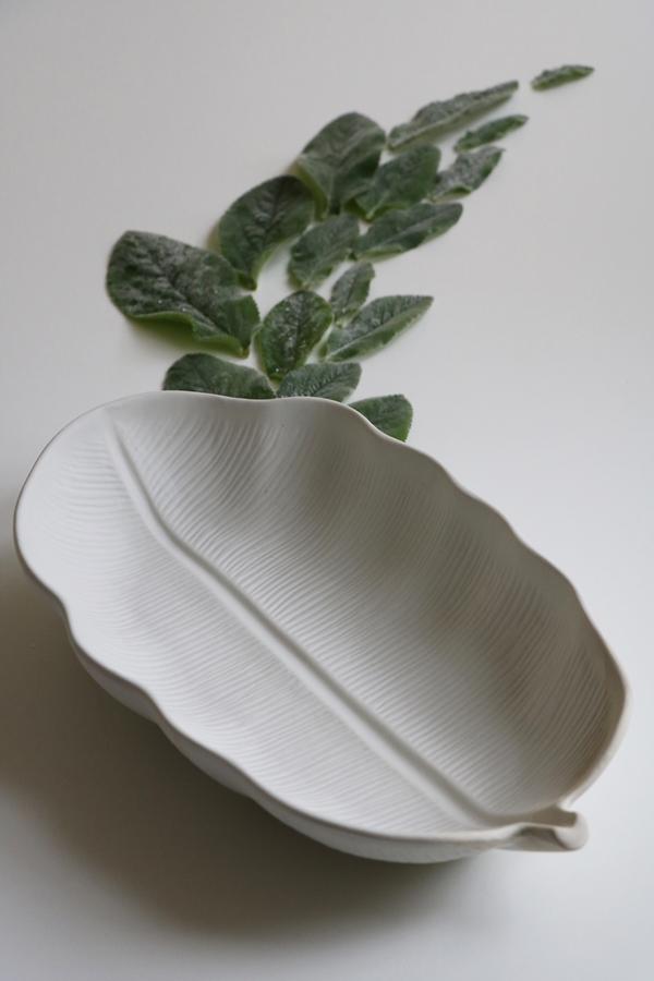 ceramicsp2171mmou